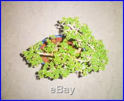 1 Premna Microphylla Windswept Bonsai Live Tree