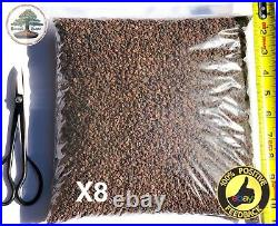 40 lbs 1/8-1/4 Horticultural Lava Rock for Cactus and Bonsai Tree Soil
