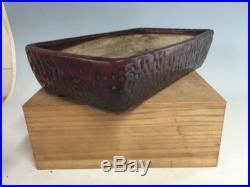 Antique Japanese Taisho Era Very Unique Bonsai Tree Pot. 100 Years Old Tokoname
