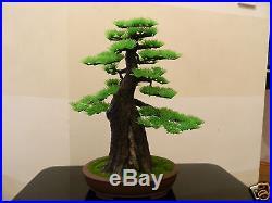 Artificial Pine Bonsai Tree Pot Home Decor Fake Office Desk Plant Plastic Asian