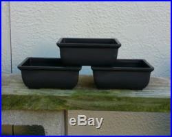 Bonsai Pots Lot of Three (3) New Larger 6 pots