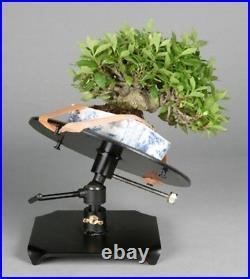 Bonsai Table, Tilt type Bonsai maintenance workbench, for mini bonsai lovers