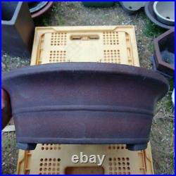 Bonsai pot Yamaaki Tokoname From Japan Free Shipping