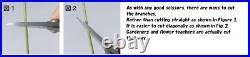 F/S KANESHIN BONSAI tools Universal scissors stainless steel No. 831 200mm JP