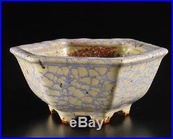 Hattori, Tokoname bonsai pot-Artist Hattori Tomoyuki