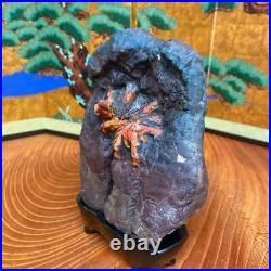 JAPANESE BONSAI SUISEKI Chrysanthemum Stone F/Neodani 16010060mm 1060g #S186
