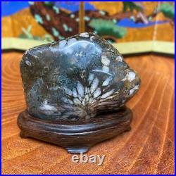 JAPANESE BONSAI SUISEKI Chrysanthemum Stone F/Neodani 706030mm 200g #S197