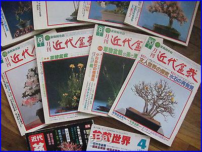 Japanese vintage magazines The Contemporary Bonsai late 70's early 80's