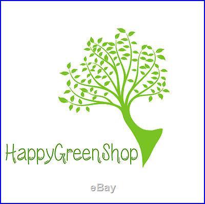 Malus Domestica APPLE TREE Bonsai 10 seeds