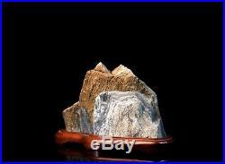 Murphys Stone Suiseki in Wooden Diaza