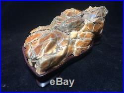 Natural polished Viewing stone suiseki-super skin Gobi desert beautiful specimen