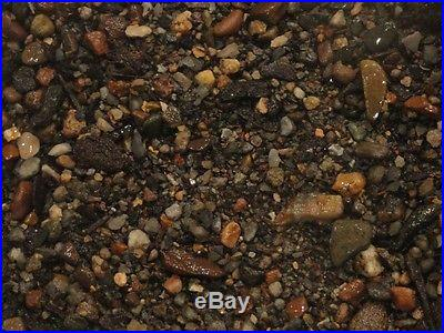Northman Bonsai Organic Master Soil Mix 1 QT