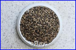 Premium mixed bonsai soil (Fine) with mycorrhizae/ akadama, lava, DG, mulch 9Lbs