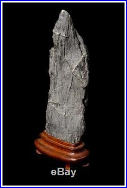SS11 JAPANESE hermit shape suiseki Sajigawa stone SUGATAISHI / kannon BONSEKI