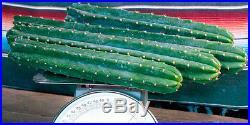 San Pedro cactus cuttings, 5+lbs real Trichocereus pachanoi fresh harvest, #2015