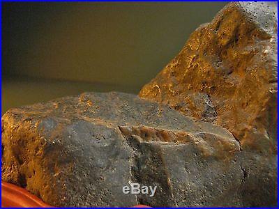 Suiseki viewing stone plateau design eel river